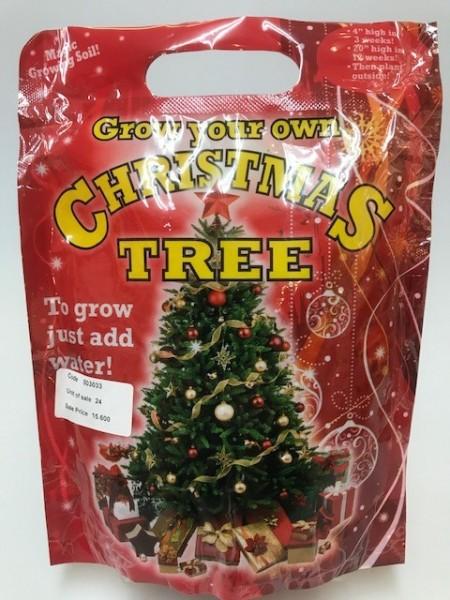 511261 GROW YOUR OWN XMAS TREE